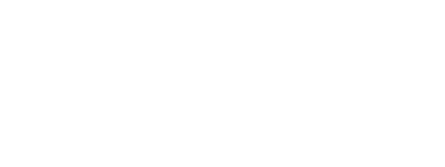EagleEi Flight Systems Logo